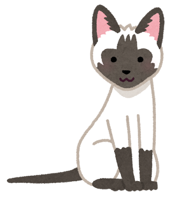 cat_syamu_siamese